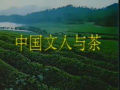 茶文化  中国文人与茶 (20播放)