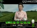 茶文化 铁观音茶艺表演 (45播放)