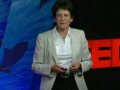 TED 在深海中标记金枪鱼 (14播放)