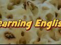 英语学习 食物 (229播放)