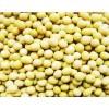 2011年产优质黄豆