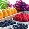 水果罐头|蜜饯凉果|果酱