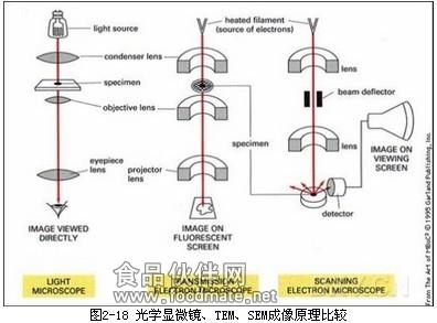 扫描隧道显微镜 扫描隧道显微镜