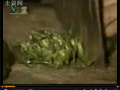 酱油酿造工艺 (144播放)