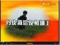 丹皮栽培及初加工(上) (6播放)
