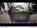 多功能洗菜机-兆辉机械 (11播放)