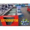 四季蓝莓浆果专用分选机 蓝莓筛选专用选果机