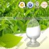 99-50-3原儿茶酸生产厂家