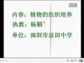 高二生物:植物的组织培养教学视频 杨颖 (22播放)
