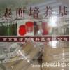 甲醛灭菌生物指示剂