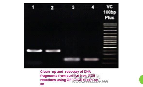 pcr由变性--退火--延伸三个基本反应步骤构成:①模板