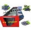 2014蓝莓选果机 新款蓝莓分选机 直径式蓝莓筛选机