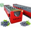 蓝莓选果机设计原理 蓝莓分选机特点