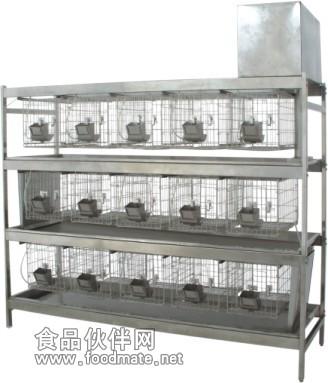 小鼠笼,大鼠实验笼,大鼠饲养笼
