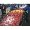 冷处理樱桃分选机 水处理樱桃选果机 樱桃分选设备