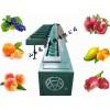 水蜜桃选果机 称重分选水蜜桃 果蔬选果机