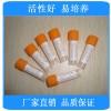 铜绿假单胞菌[ATCC27853] 【优惠销售优质标准菌株】便诊生物