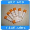 金黄色葡萄球菌[ATCC43300] 【优惠销售优质标准菌株】便诊生物