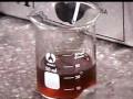 α-淀粉酶的疏水层析——教材实验104.2 (34播放)