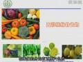 第三军医大学公开课:植物化学物——果蔬中的健康卫士 (77播放)