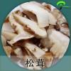 云南特产 野生松茸菌冻品 冻松茸菌蘑菇批发 野生食用菌厂家批发