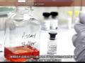 免疫分析实验1:使用Novex® 抗体对进行ELISA实验 (85播放)