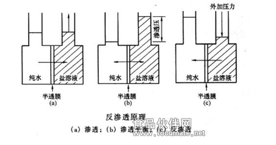 高速混床结构图