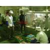 包装机 调味料包装机供应商