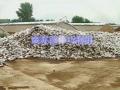 废弃菌棒巧利用 (30播放)