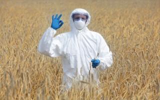 德国研究发现转基因作物有利于农民与环境