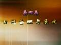 中级蔬菜园艺工(四) (13播放)