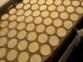 600 饼干生产线