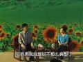 春夏季生猪的疾病防治 (10播放)