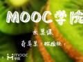 慕课MOOC水果课:奇异果?猕猴桃! (166播放)
