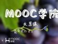 慕课MOOC水果课:葡萄你的白霜是什么 (212播放)