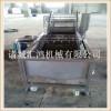 小龙虾清洗机 自动洗海产品机 臭氧洗菜机