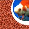 鱼饲料、漂浮于饲料设备
