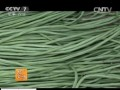 [农广天地]春早熟豇豆栽培技术 (35播放)