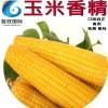 玉米香精 耐高温 厂家直销