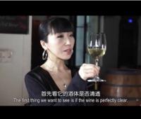 《葡萄酒鉴赏家》第三季第三集:意大利葡萄酒品酒会 (16播放)