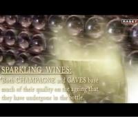 第11集:葡萄酒的陈酿和后期加工过程 (58播放)