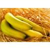香蕉农残检测机构,香蕉乙烯利检测