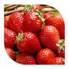 草莓粉 草莓喷雾干燥粉草莓速溶粉