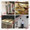 鱼肉烘干房、 海产品烘干房
