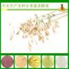 燕麦酵素粉 专业生产各种酵素粉