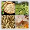纯天然燕麦酵素粉