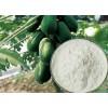木瓜蛋白酶生产厂家批发添加量用途及酶活
