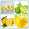 檸檬皮提取物粉 檸檬皮原粉