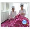 微波鲜花干燥设备 花瓣烘干设备