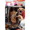 土耳其烤肉加盟VS土耳其烤肉夹馍加盟